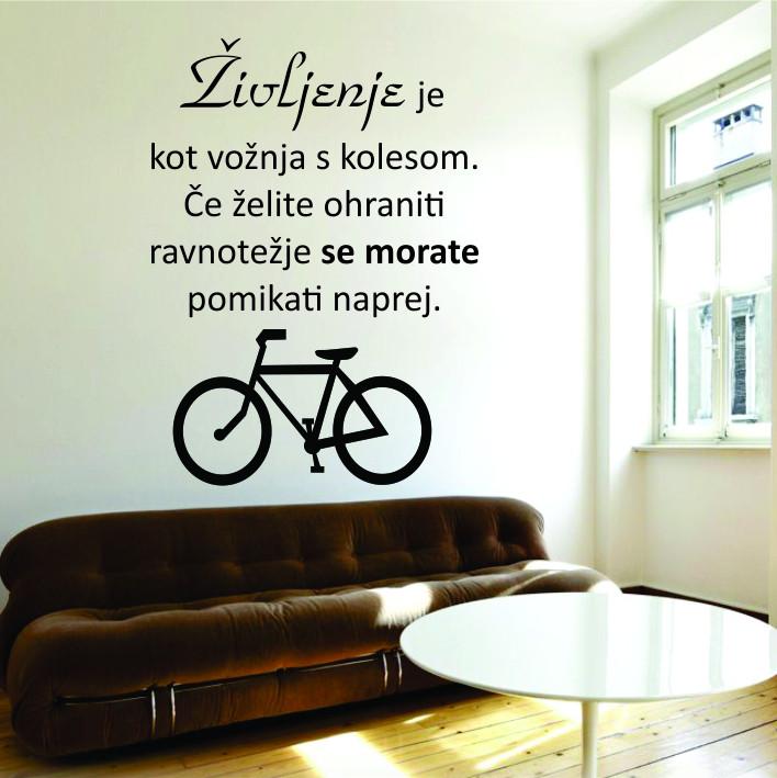 Življenje je kot vožnja s kolesom