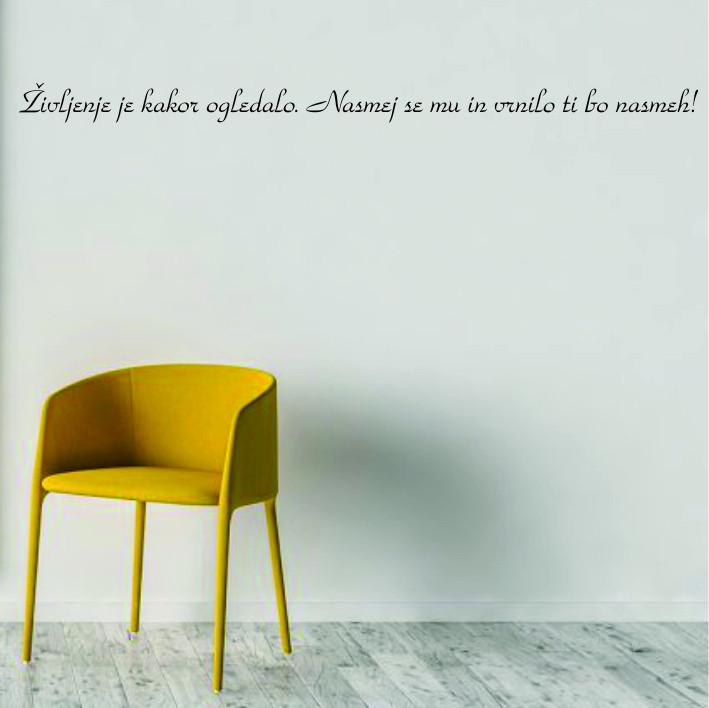 Življenje je kakor ogledalo